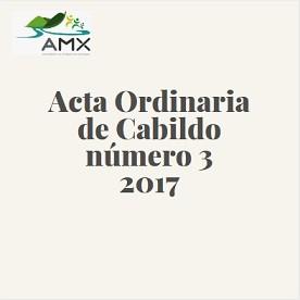 Acta Ordinaria 3 2017