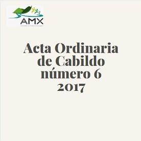 Acta Ordinaria 6 2017