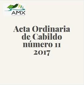 Acta Ordinaria 11 2017