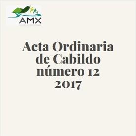 Acta Ordinaria 12 2017