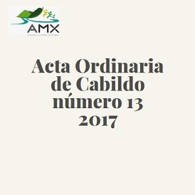 Acta Ordinaria 13 2017