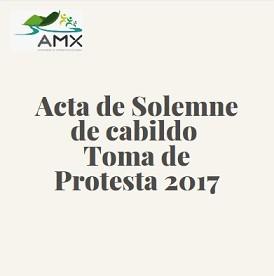 Acta Solemne Toma de Protesta