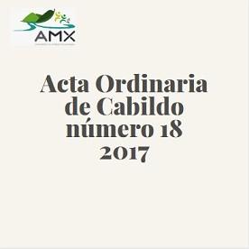 Acta Ordinaria 18 2017