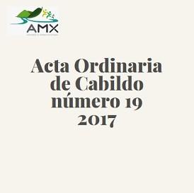 Acta Ordinaria 19 2017