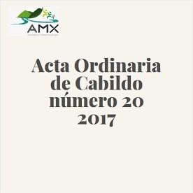 Acta Ordinaria 20 2017