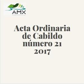 Acta Ordinaria 21 2017