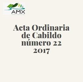 Acta Ordinaria 22 2017
