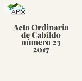 Acta Ordinaria 23 2017
