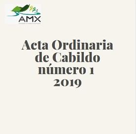 Ordinaria 1 2019