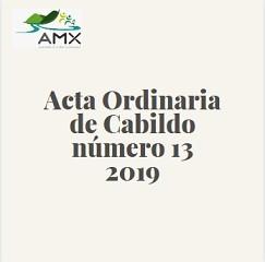 Ordinaria 13 2019