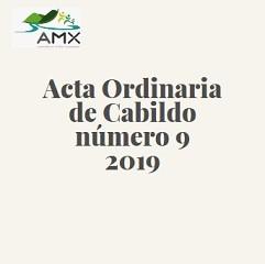 Ordinaria 9 2019
