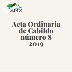 Ordinaria 8 2019