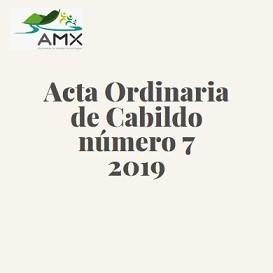 Ordinaria 7 2019