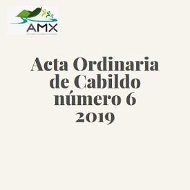 Ordinaria 6 2019
