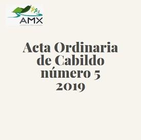 Ordinaria 5 2019