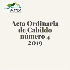 Ordinaria 4 2019