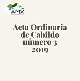 Ordinaria 3 2019