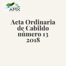 Ordinaria 13 2018