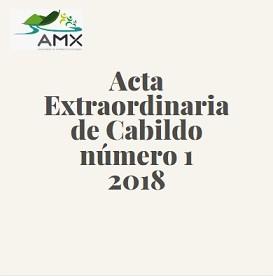Extraordinaria 1 2018