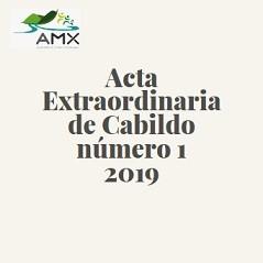 Extraordinaria 1 2019