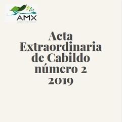 Extraordinaria 2 2019