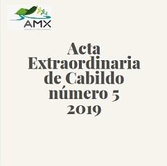 Extraordinaria 5 2019