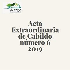 Extraordinaria 6 2019