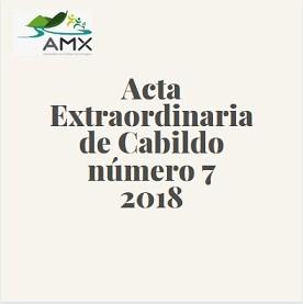 Extraordinaria 7 2019