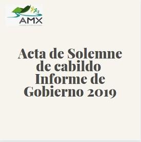 Acta Solemne informe 2019