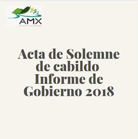 Acta Solemne Informe 2018